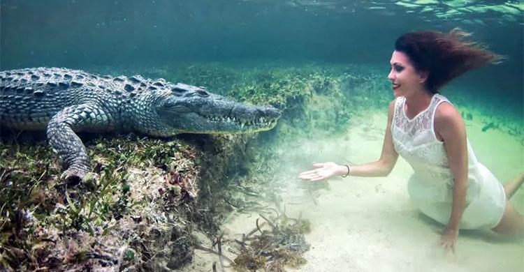 International Model Roberta Mancino poses underwater nearby Deadly Crocodiles